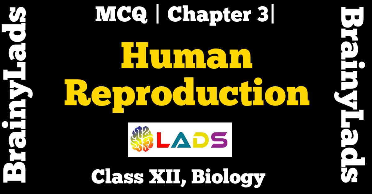 MCQ Of Human Reproduction